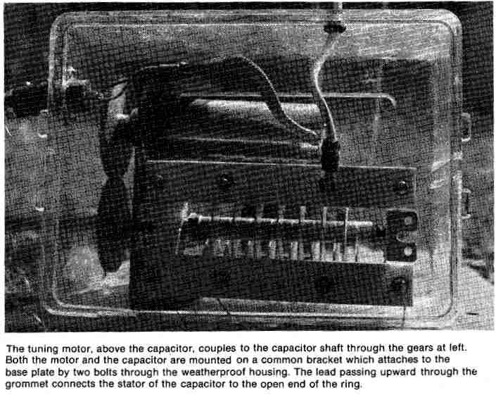 40Meter-DDRR-Antenna-Image9